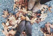fall loveliness