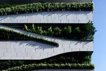 Green Wall / by HWCA