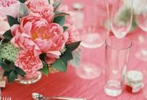 tablescape / by Sarah Tucker