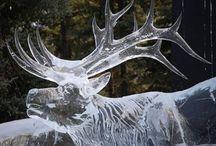 Ice Sculptures And Snow sculptures..... / by Jennifer Pylypuk