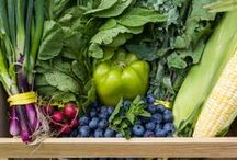 Eating Local with Boston Organics / Here's a peek of our weekly Dogma Box, a box of organic produce that's sourced as locally as possible all year long.
