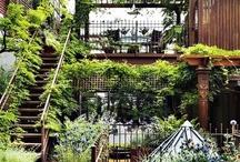 Garden Retreats / by YaYiDesign