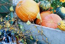 On Trend For Autumn / Crisp air, changing leaves and the call of fall have us set to harvest {and share} ideas & inspiration for the coming autumn season. DIY ideas, home decor looks, and favorite finds for around the home. / by Rejuvenation