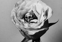 •  s k u l l z • / skulls skulls skulls / by mir