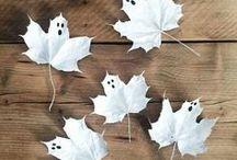 halloween / halloween | treats | pumpkins