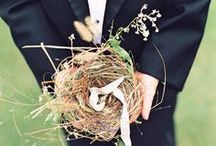 wedding | ring bearers