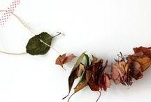 Herbst // autumn / Dekorationen und kreative Ideen zum Herbst // decoration and creative ideas for autumn