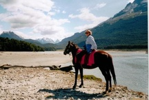 Horse Safaris / Sophie Neville writes of her adventures as a horse safari guide and great rides on ~ http://ride-the-wings-of-morning.blogspot.co.uk/