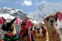 Perú / This board includes pictures of beautifull places to go in Perú. If you want to visit Perú and learn spanish visit us: www.intercoined.com