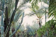 abc journeys: morocco