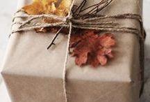 dreams of fall. / by Jill Komperud