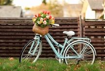 bike love. / by Jill Komperud