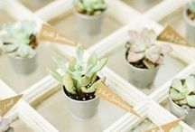"""~ Wedding Favors ~ / Hi Brides & Friends, its Alice Hartley here - writer/photographer for Bride Club ME. Wedding Favors (also known as Bonbonieres) are such a charming way to commemorate your wedding. By gifting your guests a keepsake to take home, they will cherish their memories of you, their special friend, who said """"I Do!""""..."""