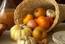 Fall and Thanksgiving Decorating / by Jeanne Bolley