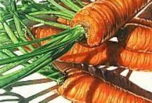 Artwork - Still Life - Food Related / by Joanna Mann