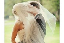 Wedding / by Ingrid Roth