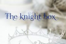 Party idea ❤ Knights / silver - boy - sword - blue - brave - horse
