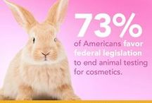 Be Cruelty-Free / Did you know that cosmetics like shampoo, mascara & hairspray are often tested on animals? Help put an end to beauty cruelty by supporting cruelty-free cosmetics companies and spreading the word about ending cosmetics testing on animals. Learn more at humanesociety.org/becrueltyfree. #BeCrueltyFree / by The Humane Society of the United States