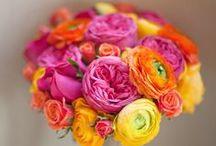 Colours I Love / by Heidi Ram