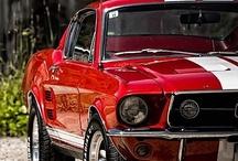 Mustangs / by Ellisha
