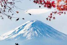 Mount Fuji / by Vicki Kellar