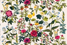 Color+Pattern / by Sarah Sutin