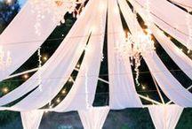 Bright Lights, Big tents!