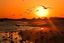 Inspiration coucher de soleil ✨