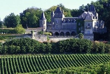 Bordeaux / by Great Wine Capitals