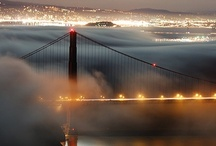 San Francisco | Napa Valley / by Great Wine Capitals Global Network