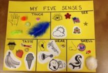 For the Love of Kids: My Body/5 Senses / by Brittany Shields