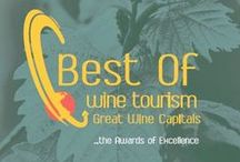 Best Of 2015 | Great Wine Capitals Winners / This board shows beautiful photos of our 2015 Best Of Wine Tourism winners... You can just click and visit their website!  / by Great Wine Capitals