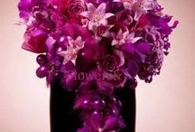 Events: Purple and Hot Pink Wedding