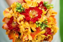 Events: Red and Yellow Wedding