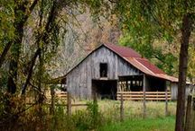 Barns / by Ann F Luckett