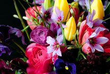 Love in Bloom / God loved flowers and created soil.  Man loved flowers and created the vase. / by Ann Luckett