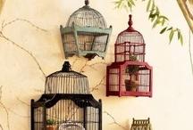 Beautiful Bird Cages