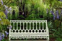 Bench / by Ann F Luckett