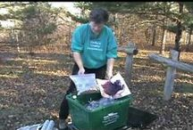 THE GARDEN - PROPAGATE PLANTS, & ETC / bringing new plants into the world / by Sue Lodmill