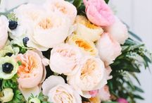 My flowers and gardens / Flowers and gardens / by snappy turtle