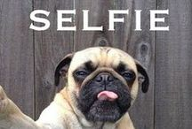 Animal selfie / Pin Whatever inspires you. No limets ! Enjoy & come back.  / by Maria 50girl