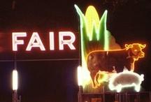 A Fair Time - Iowa State Fair / by Denise Froehlich
