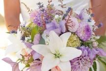 Dream Wedding / by ashley heffernan