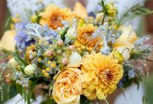 Photos of our flowers by some of our favorite photographers