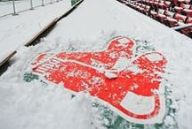 Happy Holidays! / Pin your team's snowy image to spread holiday cheer from MLB!