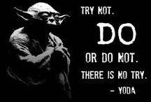 Jung ~ Yoda ~ House