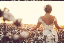 The Cotton Bride / Let Cotton Walk You Down the Aisle / by Ellen Dulweber