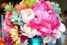 The Flower / Gorgeous stems & bouquets.