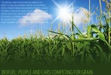 Sustainable biomass and bioenergy / by Bioenergy Crops