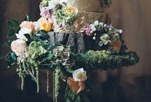 Weddings / by Grace Richards